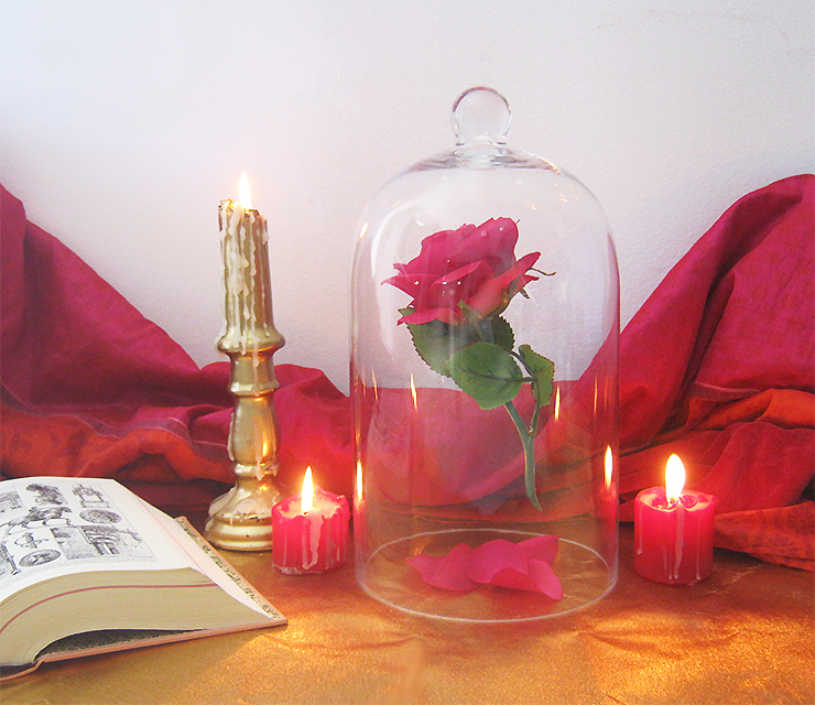 Diy La Rose Enchantee De La Belle Et La Bete