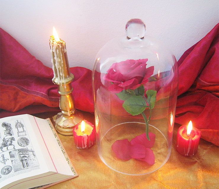 diy-rose-belle-bete-10