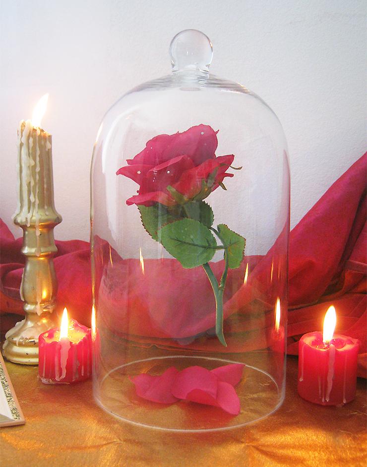 diy-rose-belle-bete-2