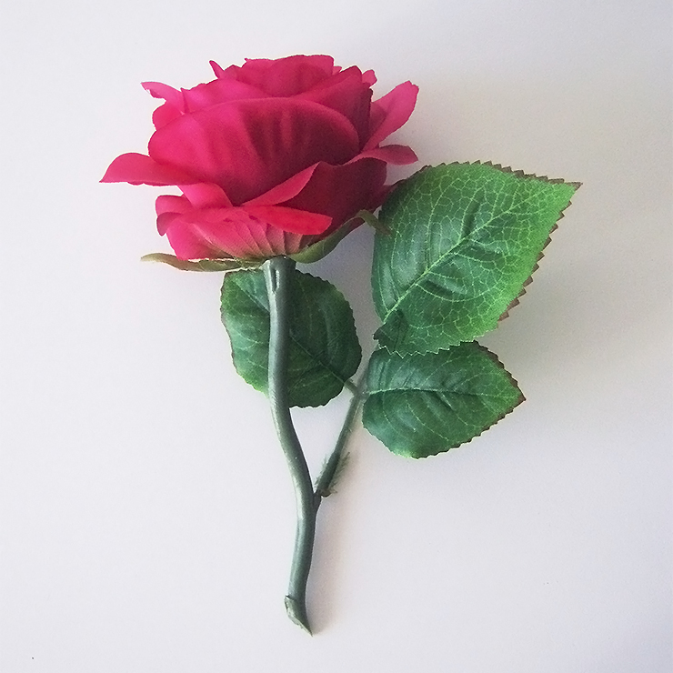 diy-rose-belle-bete-5