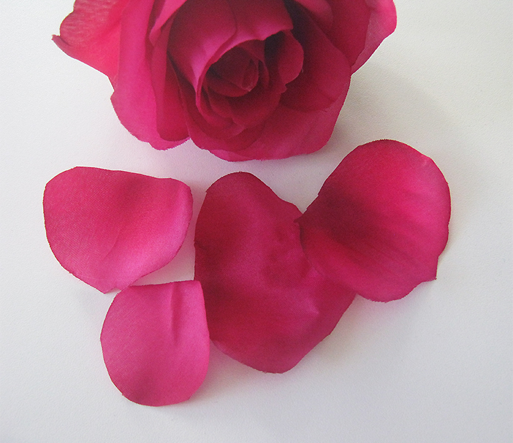 diy-rose-belle-bete-9
