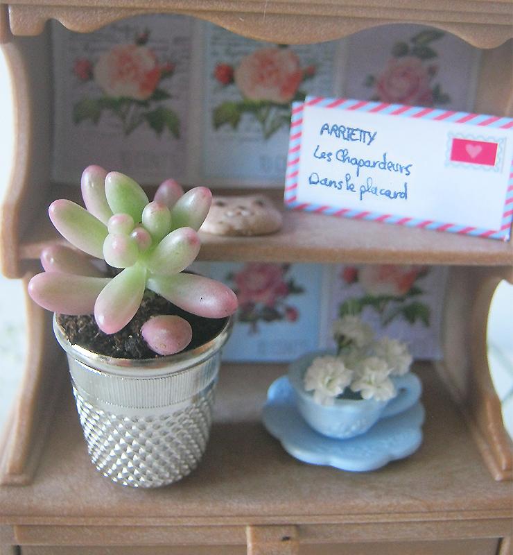 plante-de-coudre-4