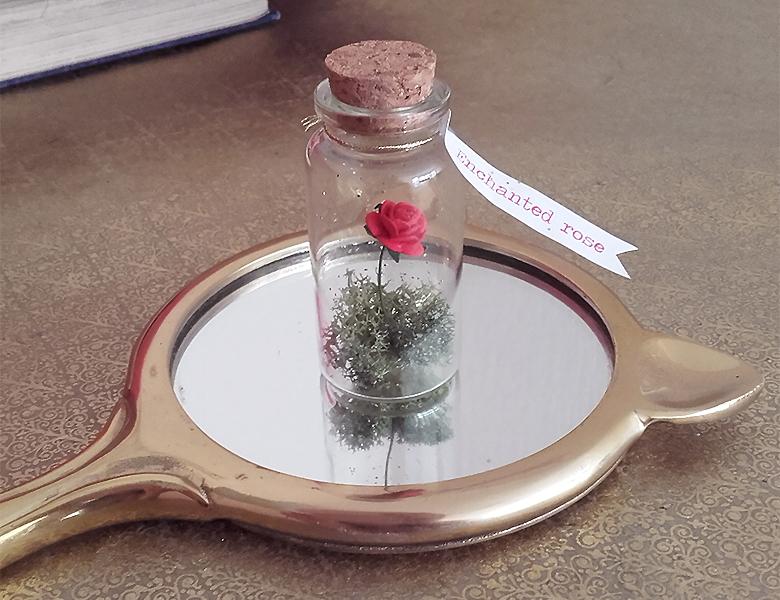 mini-rose-enchantee-6