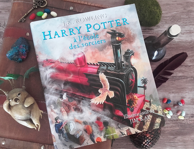 Lecture Harry Potter Illustre Par Jim Kay La Parenthese